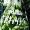 埼玉県産の「葉付き枝豆」と茨城県産の「メロン」 今週土曜日の特売情報