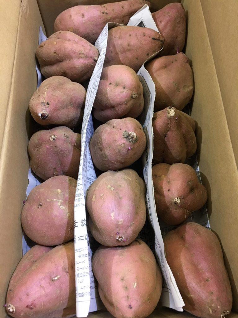 鹿児島県産の「安納芋」