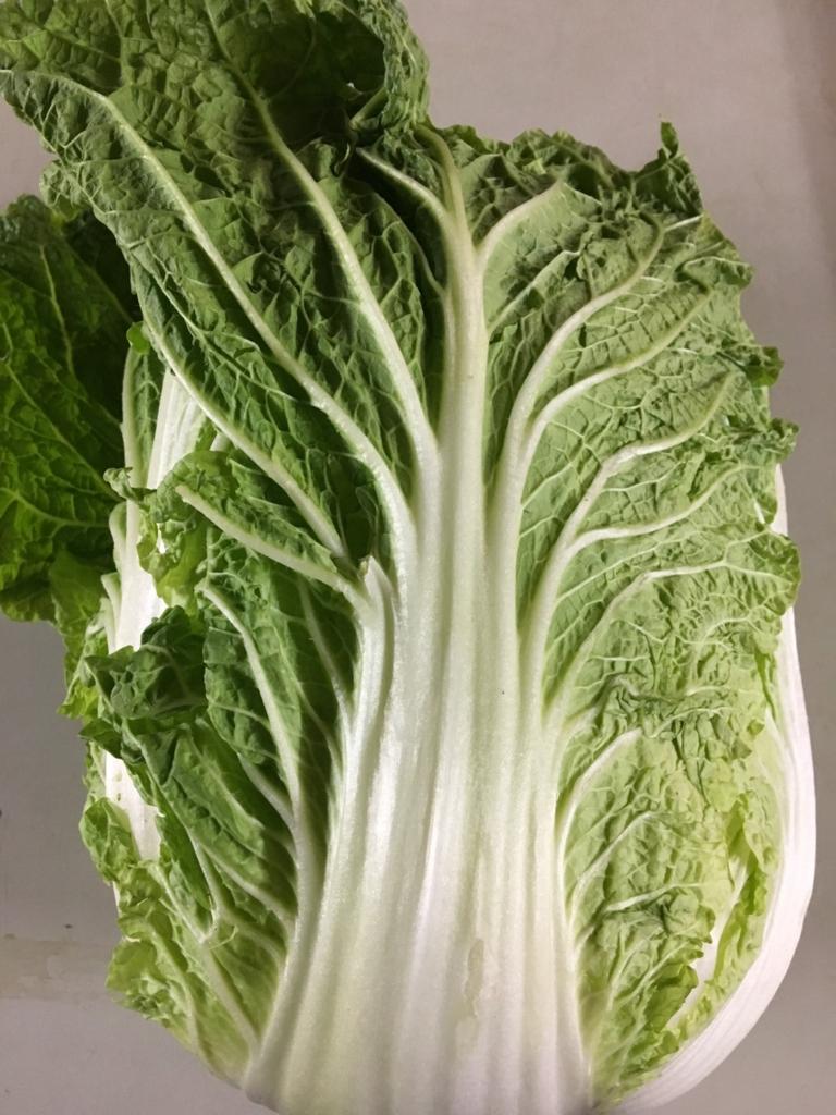 長野県産の白菜