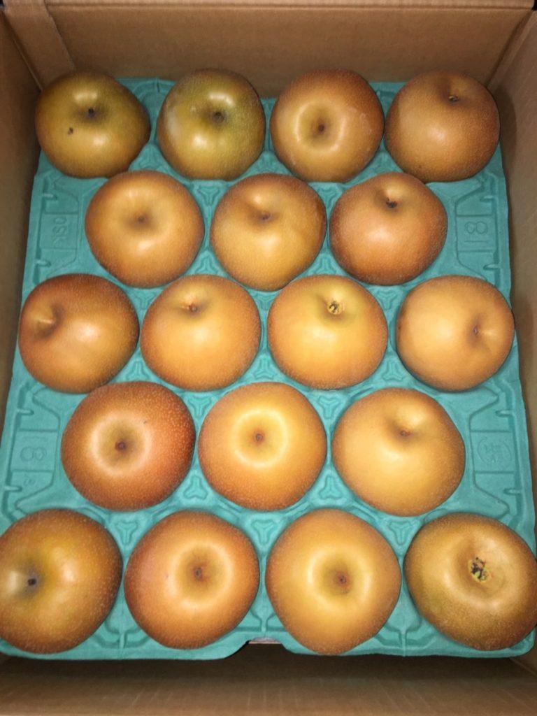 福島県産の梨