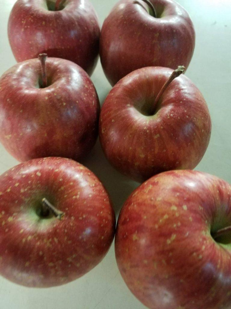 長野県産の有機リンゴ