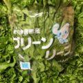 愛知県産のグリーンカール・千葉県産のサラダ春菊 今週土曜日の業務用野菜 特売情報