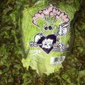 茨城県産のサニーレタスとグリーンカール|今週土曜日の業務用野菜・特売情報