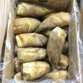 熊本県産のタケノコ・鹿児島県産のソラマメ|今週土曜日の業務用野菜 特売情報