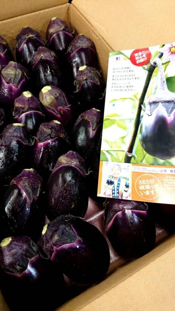 大阪産の水茄子