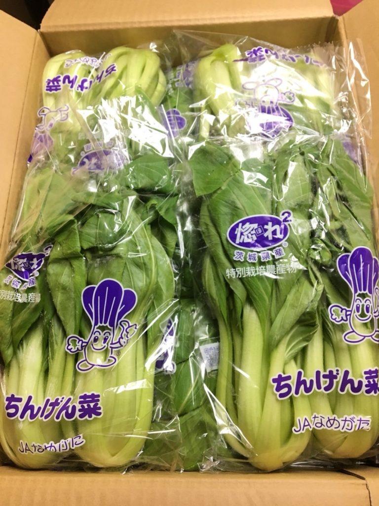 茨城県産のチンゲン菜