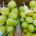 【特売情報】長野県産のシャインマスカットと北海道産のペコロス|今週土曜日のお得な業務用野菜