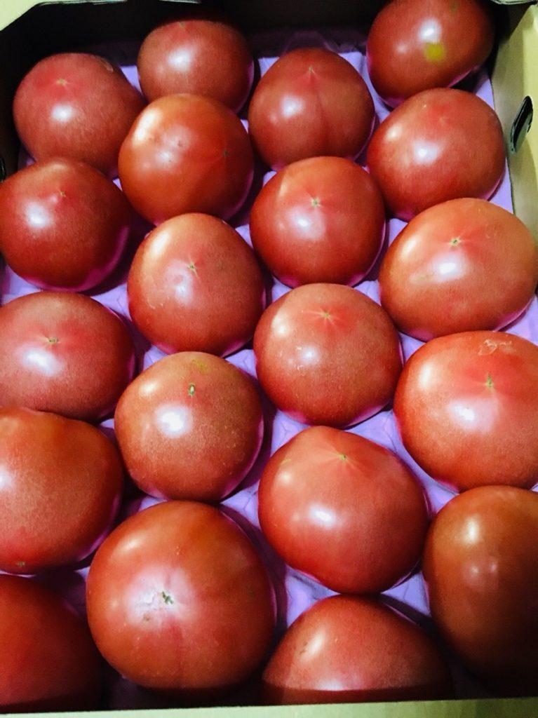 熊本県産のトマト