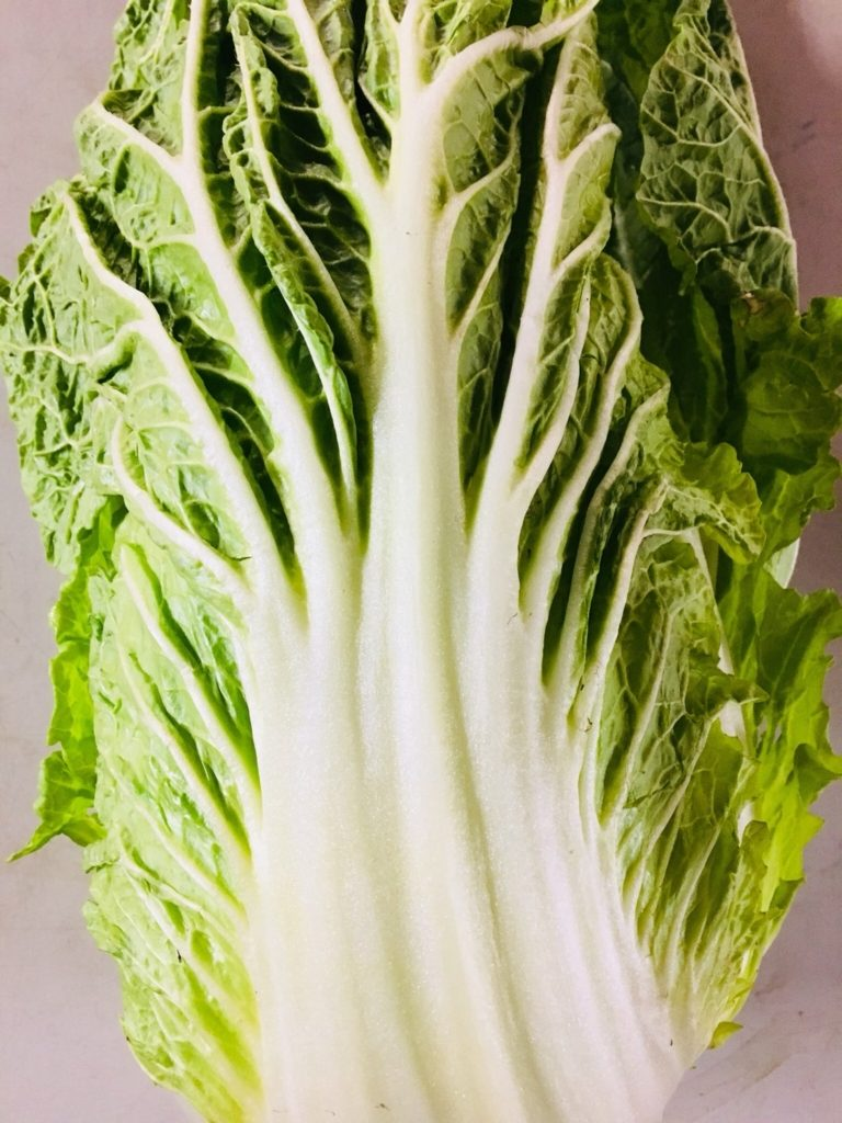 茨城県産の白菜