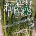 1月のおすすめ業務用旬野菜「おいしい菜」