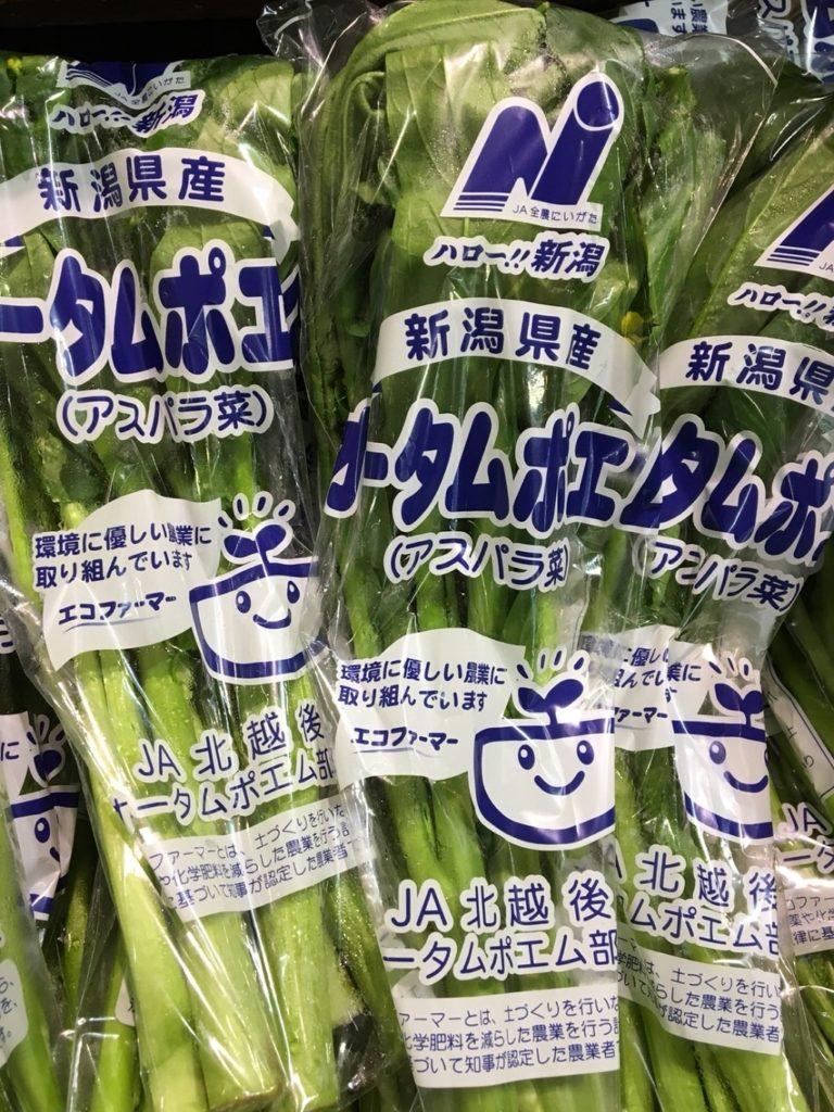 アスパラ菜(オータムポエム)