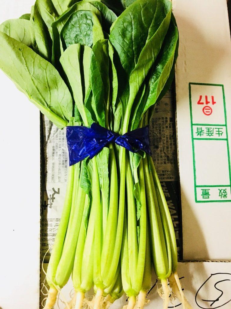 茨城県産の小松菜