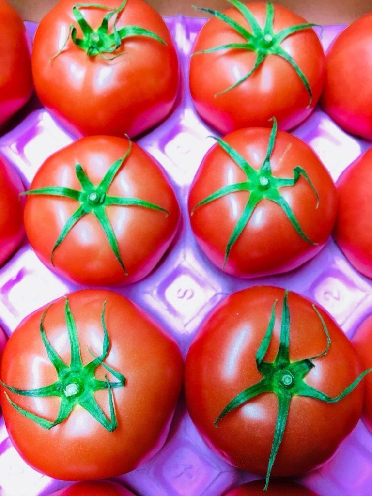 茨城県産のトマト