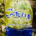 【特売情報】千葉県産のサラダ菜|今週土曜日のお得な業務用野菜