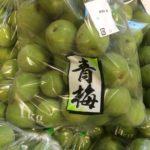 青梅|6月のおすすめ業務用旬野菜の仕入れ情報