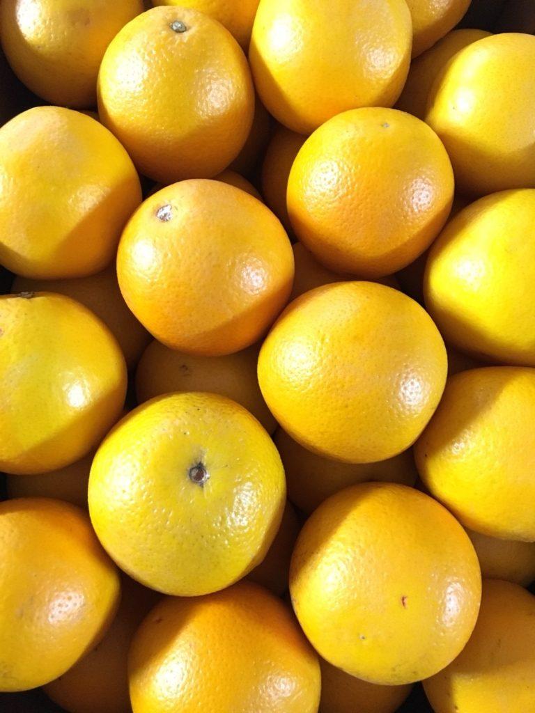 オーストラリア産のオレンジ
