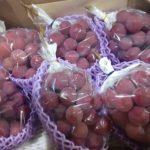 10月のおすすめ果物「クイーン・ニーナ」